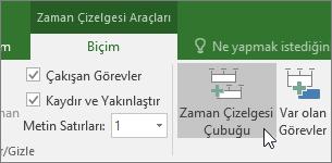 Microsoft Project zaman